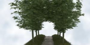 Space Tree Pro
